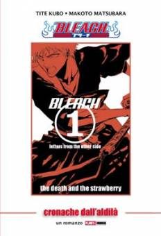 Bleach Letters From The Other Side - Romanzo